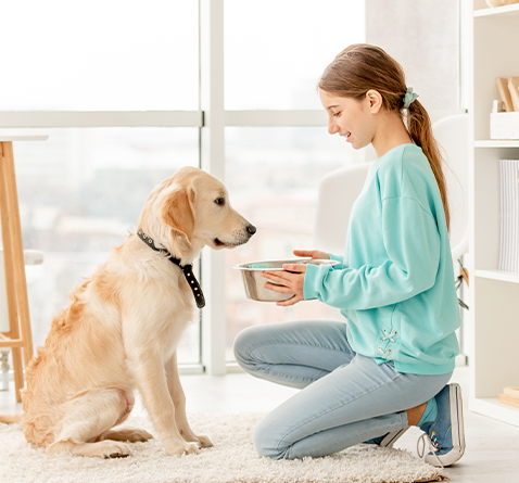 Mädchen füttert Hund
