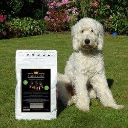 Canis Gold Welpen | Junior Kaninchen + Kartoffel | 65 % Fleisch | Welpen- und Junghund Futter