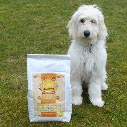 Caldor Puppy + Junior Huhn & Kartoffel | alle Rassen