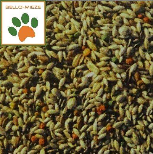 LuCano  Kanarien Futter Gold-Mix ohne Rübsen mit Früchten